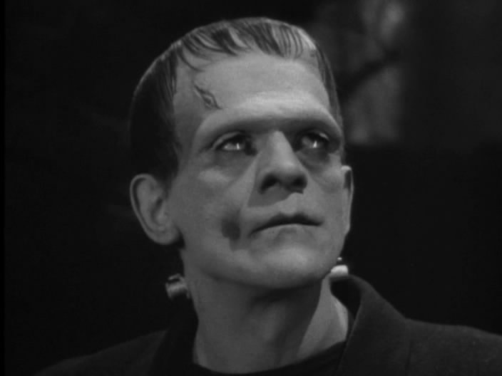 a literary analysis of the bride of frankenstein by james whale
